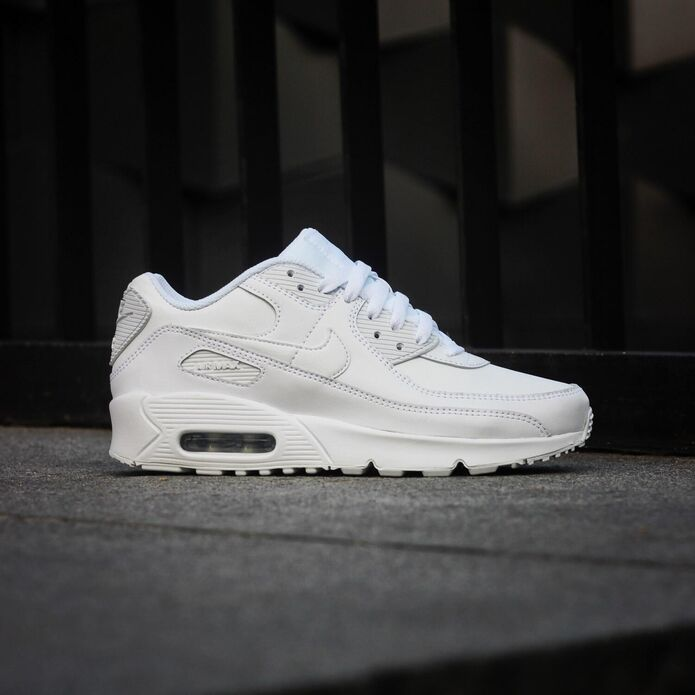 Кроссовки Nike Air Max 90 Leather (GS) (CD6864-100)
