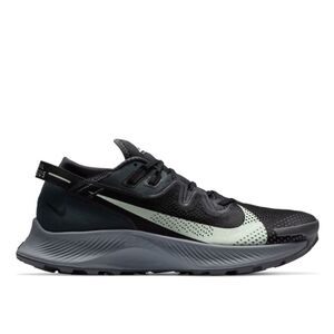 Nike Pegasus Trail 2 M Черные