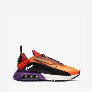 Кроссовки Nike Air Max 2090 BV9977 800