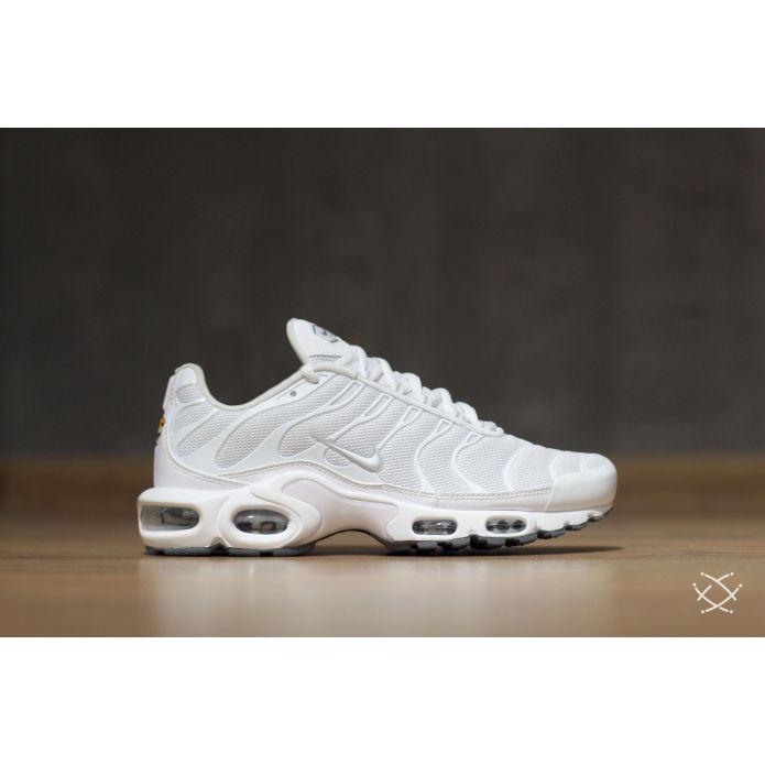 Оригинальные кроссовки Nike Air Max Plus (604133-139)