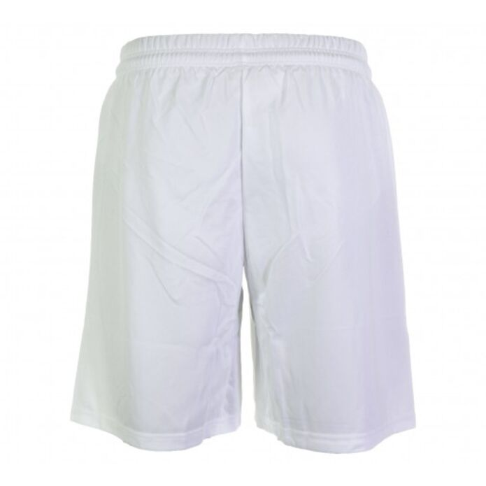 Puma Team Shorts With Innerbief (701274-16)