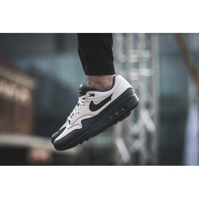 Nike Air Max 1 Premium 875844 100
