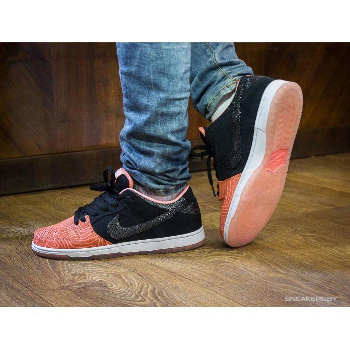 кроссовки Premier x Nike Dunk Low Premium SB